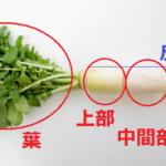 家庭で簡単エコクッキング~無駄なく野菜を使い切る知恵~