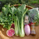 旬野菜で栄養を摂ろう~春夏秋冬、野菜には美味しくなる季節がある~