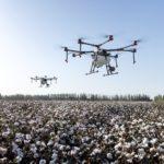 スマート農業とは農林水産省の机上の空論?ほ場で感じる私の違和感