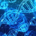 ゲノム編集を規制する世界、日本は?未知の危険性がその問題点