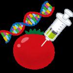 遺伝子組み換え食品の安全性を考える~賛成派・反対派比較編