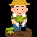 有機農業や自然農法、色々あるが違いは何?安全性と関係ない農法比較