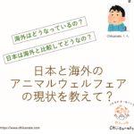 日本と海外のアニマルウェルフェアの現状比較【日本は超遅れてます】