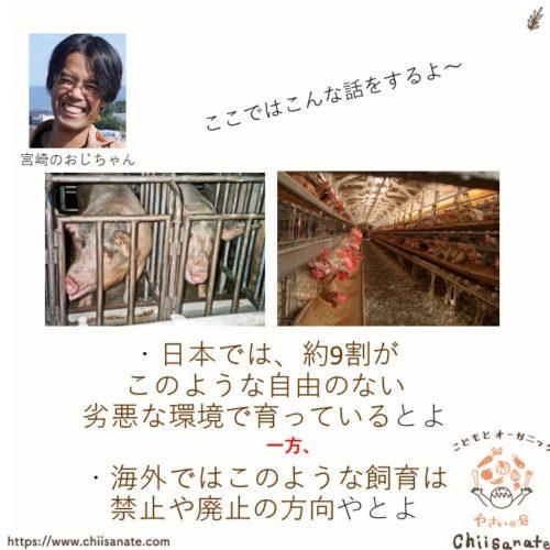 【悲報】日本は海外と比較してアニマルウェルフェアの超後進国(説明画像)