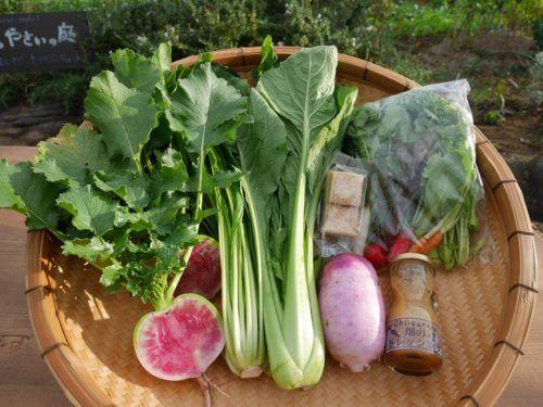 九州の有機野菜宅配:レストランChiisanateのお裾分け便(セット内容画像)