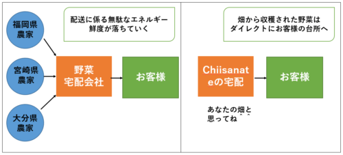 Chiisanate野菜の栽培記録