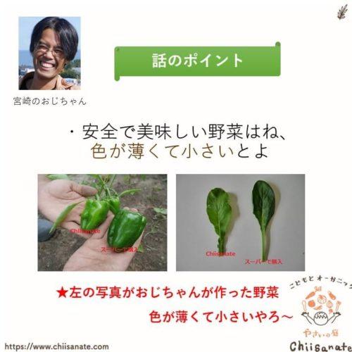安全な有機野菜とは色が薄くて小さい野菜(説明画像)
